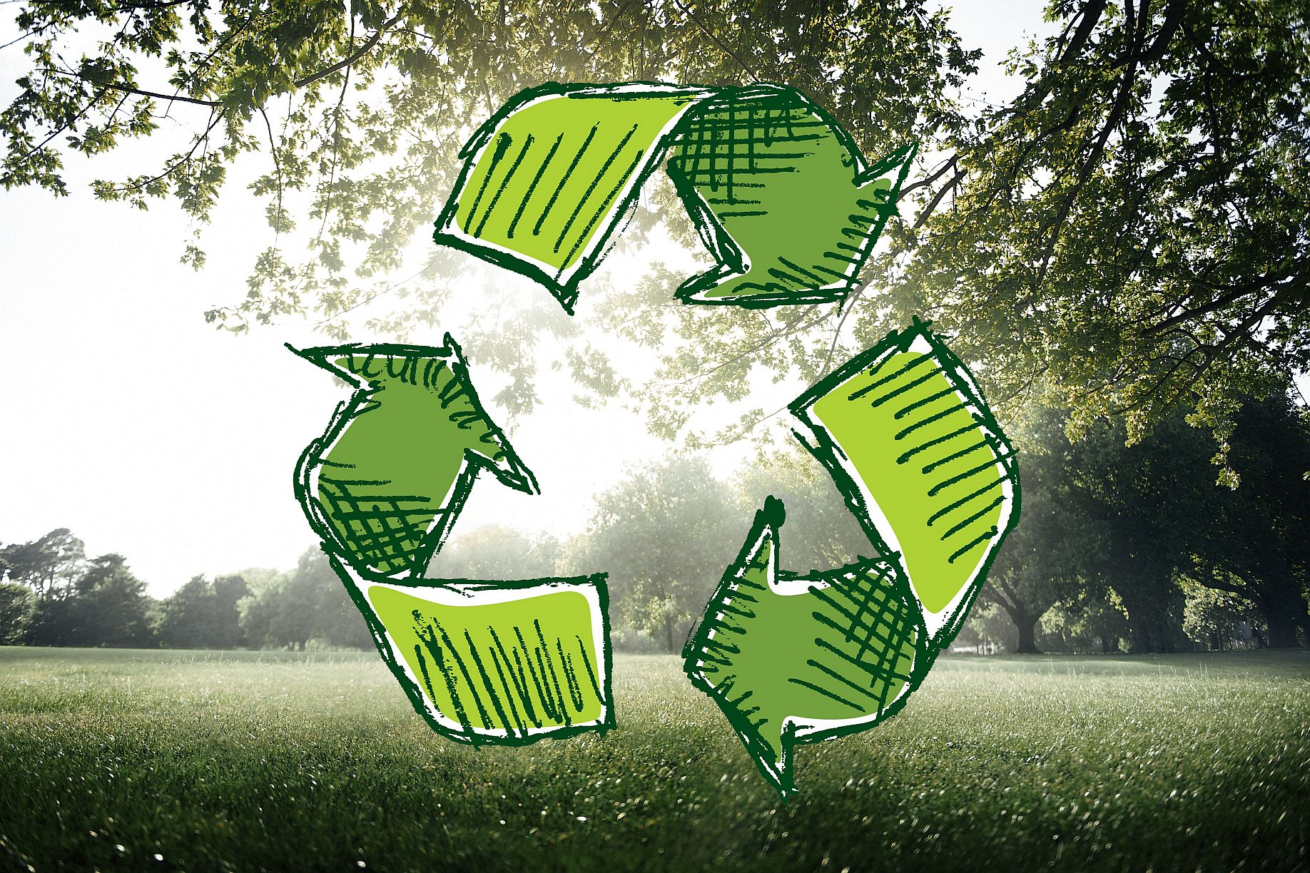 Czym jest recykling, czyli fakty i mity na temat przetwarzania odpadów